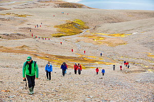 Passengers on an expedition cruise to Antarctica following part of Shakleton's famous walk across South Georgia. The group are walking from Fortuna Bay to Stromness. South Georgia, Antarctica. Februar... - Ashley Cooper