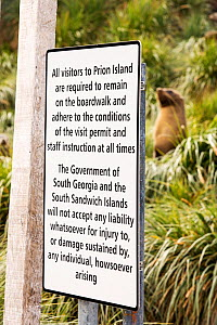A female Antarctic Fur Seal (Arctocephalus gazella) on Prion Island, South Georgia, Southern Ocean, with a sign requesting visitors to remain on the boardwalk.  -  Ashley Cooper