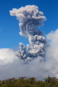 Ash plume from the Cotopaxi Volcano erupting, Cotopaxi National Park, Cotopaxi, Ecuador , August 2015. - Lucas Bustamante