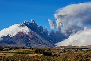 Cotopaxi Volcano with plume of ash from eruption, Cotopaxi National Park, Cotopaxi, Ecuador, August 2015. - Lucas Bustamante