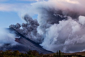 Plume of ash over the erupting Cotopaxi Volcano, Cotopaxi National Park, Cotopaxi, Ecuador, August 2015. - Lucas Bustamante