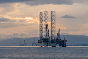 Decommissioned oil rigs. Cromarty Firth. Highlands, Scotland. September 2016  -  Terry  Whittaker