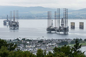 Decommissioned oil rigs and Cromarty town. Cromarty Firth. Highlands, Scotland. September 2016  -  Terry  Whittaker