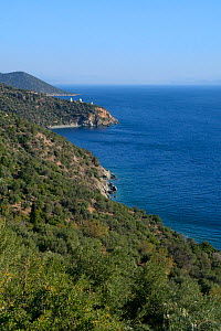 Overview of Cape Lygaria with three old windmills on the coast of Arcadia, near Tyros, Peloponnese, Greece, August 2017.  -  Nick Upton
