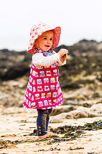 Girl, aged 12 months, playing with seaweed on Langland Beach, Gower, Wales, UK. Model released. April.  -  Merryn Thomas