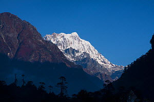 Snow-capped mountains, Sikkim, India. October 2008.  -  Felis Images