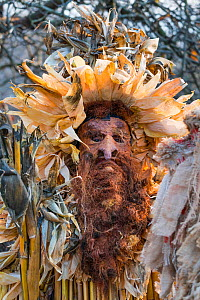 Man in costume at 'La Vijanera' Carnival in Silio. Molledo Municipality,  Cantabria, Spain. January 2017.  -  Juan  Carlos Munoz
