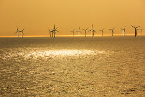 Offshore wind farm in Dutch waters an hours sailing from Ijmuiden, Netherlands. May 2013 - Ashley Cooper