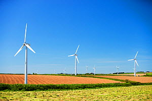 A wind farm on agricultural land in West cornwall near St Ives, UK. May 2009  -  Ashley Cooper