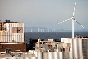 The Kodak factory in Workington Cumbria, with a wind turbine helping to power the plant, and the Robin Rigg offshore wind farm in the background. England, UK. January 2012 - Ashley Cooper