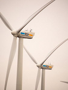 Wind farm in the Netherlands south of Amsterdam. April 2013 - Ashley Cooper