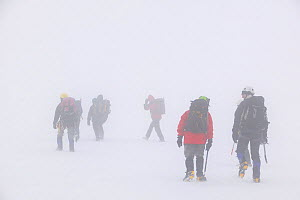 Climbers in a whiteout on Aonach Mhor a Munro near Fort William Scotland. March 2005  -  Ashley Cooper