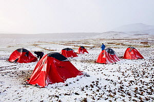 Trekkers camp in the snow,  Jebel Sirwa region of the Anti Atlas mountains of Morocco, North Africa. April 2012 - Ashley Cooper