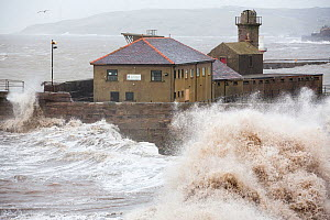 Whitehaven harbour during the January 2014 period of storm surge, high tides and storm force winds. The coastline took a battering, damaging the harbour wall and eroding a large section of coastal cli... - Ashley Cooper