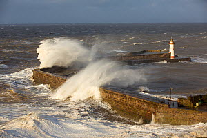 Storm waves from an extreme low pressure system batter Whitehaven harbour, Cumbria, UK, December 2014. - Ashley Cooper