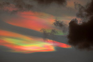 Bizarre lighting effects in nacreous clouds at sunset over Ambleside, caused by refraction off ice crystals in high clouds affected by the extreme wind speeds. England, UK. February 2016 - Ashley Cooper