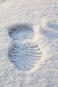 Footprint in snow, Ambleside, Lake District, Cumbria, England, UK. February 2009  -  Ashley Cooper