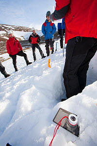 Member of the Scottish Avalanche Information Service demonstrates how to assess avalanche risk on  Cairngorm in the Cairngorm National Park in Scotland UK. February 2009  -  Ashley Cooper