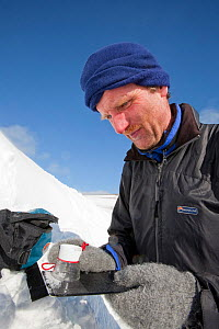 Member of the Scottish Avalanche Information Service looks at snow crystals to help assess avalanche risk on  Cairngorm in the Cairngorm National Park, Scotland, UK. March 2009  -  Ashley Cooper