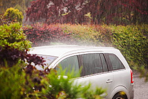 Torrential rain falling in Ambleside during a thunderstorm. England, June 2012  -  Ashley Cooper