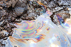 Tar sands with iridescent oil patterns. Alberta, Canada. August 2012  -  Ashley Cooper