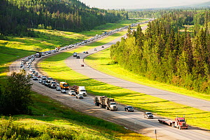 Traffic on Highway 63 through boreal forest, Alberta, Canada, August. - Ashley Cooper