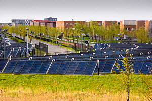 Sun Island in Almere, which is the Netherlands youngest town, in Flevoland, which was reclaimed from the sea. This planned city is very green, with space heating provided from a nearby combined heat a...  -  Ashley Cooper