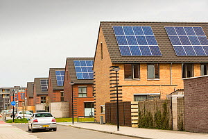 Sun city a suburb of Heerhugowaard in the Netherlands that has develped as a solar hot spot, with the majority of the houses powered by solar panels and is the largest CO2-neutral residential area in... - Ashley Cooper