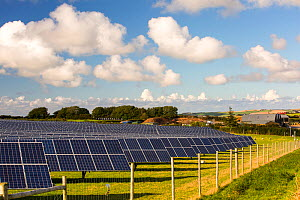 A farm based solar plant near wadebridge, Cornwall, UK,. August 2015 - Ashley Cooper