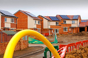 Gentoo house builder's Hutton Rise housing development in Sunderland, UK.  All of the houses have either solar thermal water heating or solar electric panels, some have both. December 2011 - Ashley Cooper