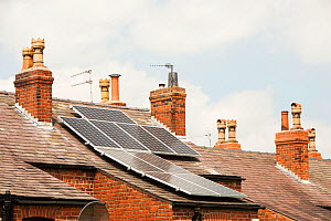 Solar panels on an old Victorian terrace house roof in Macclesfield, Cheshire, UK. May 2012 - Ashley Cooper