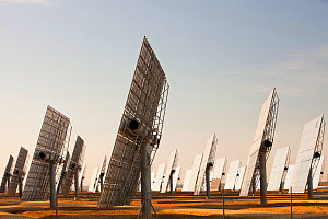 Heliostats, large reflective mirrors directing sunlight to the PS20 solar thermal tower, the only such working solar tower currently in the world. Sanlucar La Mayor, Andalucia, Spain. May 2011  -  Ashley Cooper