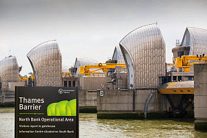 The Thames barrier on the River Thames in London. It was constructed to protect the capital city from storm surge flooding. England, UK, June 2014 - Ashley Cooper