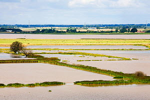 The Breach at Alkborough. This is a break in the sea defences flooding farmland to create 150 hectares of wetland protecting urban  Humber Estuary, Eastern England, UK August 2008 - Ashley Cooper