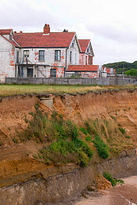 Happisburgh on the Norfolk Coast. This section of coast is the fastest eroding point in the UK and speeding up due to global warming induced sea level rise and increased stormy weather. August 2006 - Ashley Cooper