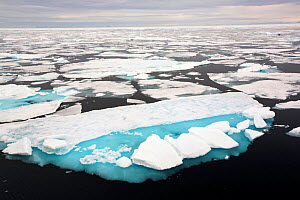 Rotten sea ice off the north coast of Svalbard, Norway. July 2013  -  Ashley Cooper