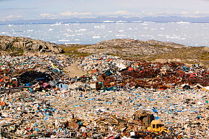 Rubbish dumped on the tundra outside Illulissat, Illulissat ice fjord Unesco World Heritage Site, Greenland, July 2008  -  Ashley Cooper
