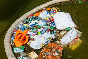 Rubbish up against a litter trap on a canal in Amsterdam, Netherlands. May 2013 - Ashley Cooper