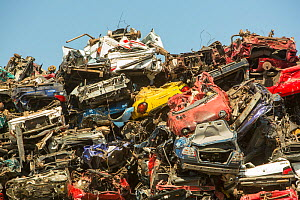 Old cars at a scrap metal merchants on the docks in Amsterdam, Netherlands. May 2013 - Ashley Cooper