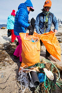 Tourists collect plastic rubbish on a remote beach in Northern Svalbard, only about 600 miles from the North Pole. The plastic has been washed ashore from the sea by ocean currents. July 2013 - Ashley Cooper