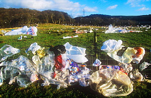 Plastic bags blown from a landfill site in Barrow in Furness, Cumbria, England,UK. - Ashley Cooper