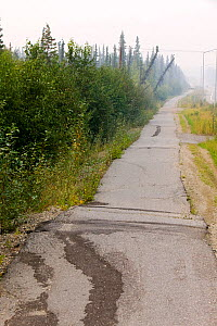 Pavement in Fairbanks Alaska collapsing into the ground due to global warming induced permafrost melt. Alaska, USA. August 2004  -  Ashley Cooper