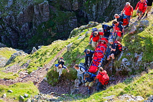 Members of Langdale Ambleside Mountain Rescue Team carrying an injured walker from the fells in Langdale, Cumbria, England, UK. August 2007  -  Ashley Cooper