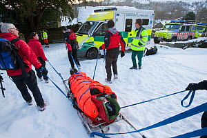 Paramedics and Mountain Rescue team members evacuate an injured walker who had fallen and injured his back, Langdale Valley, Lake District, England, UK. January 2010  -  Ashley Cooper