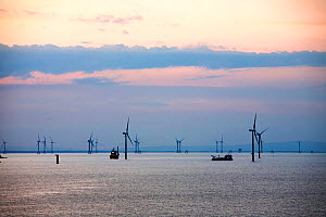 Boats working on the construction of the Walney offshore windfarm at dawn, Cumbria, UK. July 2011  -  Ashley Cooper