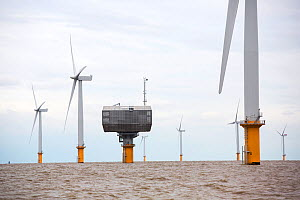 Gunfleet Sands offshore wind farm, including the sub station is owned and operated by Dong energy. Brightling Sea, Essex, UK. September 2015  -  Ashley Cooper