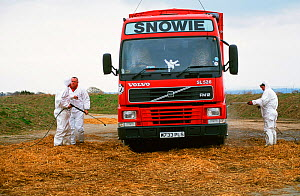 Lorry is disinfected after dropping off slaughtered carcasses of animals with Foot and Mouth Desease at the mass grave site at Orton in Cumbria, England, UK. 2001. - Ashley Cooper