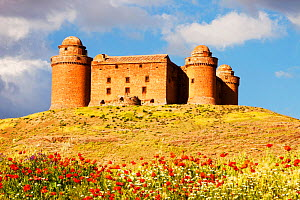 La Calahorra Castle in La Calahorra with spring flowers,  at the foot of the Sierra Nevada mountains in Andalucia, Spain.  -  Ashley Cooper