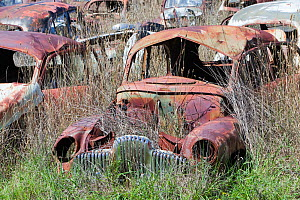 Flynns wrecking yard with cars going back to the 1920's, near Cooma in New South Wales, Australia. February 2010. - Ashley Cooper