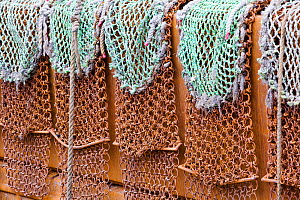 Scallop dredging nets on the side of a trawler in Kirkudbright harbour,  Scotland, April.  -  Ashley Cooper